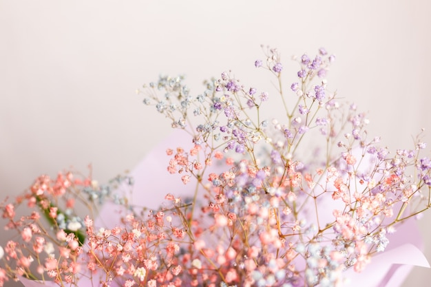 Schöne dekoration niedliche kleine getrocknete bunte blumen, tapete. Kostenlose Fotos