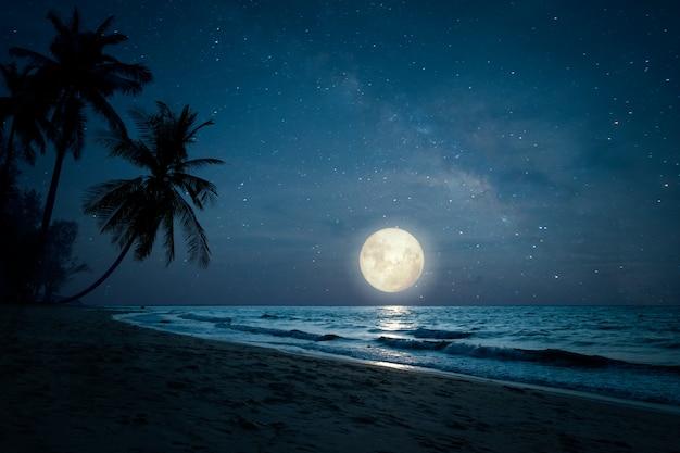 Schöne fantasie des tropischen strandes der landschaft mit schattenbildpalme in den nächtlichen himmeln und im vollmond Premium Fotos