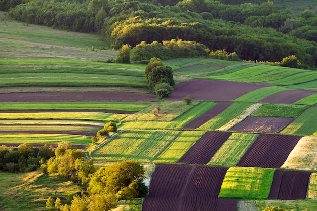 Schöne friedliche mehrfarbige geflickte luftaufnahme von dunklen gepflügten und grünen feldern, bäumen, büschen und wald an hellem sonnigem frühling oder sommertag. schönheit der natur, landwirtschaft und landwirtschaftskonzept. Premium Fotos