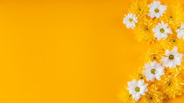 Schöne frühlingsblumenkomposition mit kopienraum Kostenlose Fotos