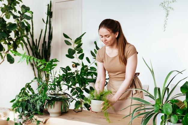 Schöne junge frau mit schürze stellt einen topf mit zimmerpflanze vorsichtig auf den tisch. pflege von pflanzen zu hause Premium Fotos