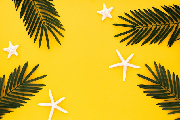 Schöne komposition mit palmblättern und seesternen auf gelbem grund Kostenlose Fotos