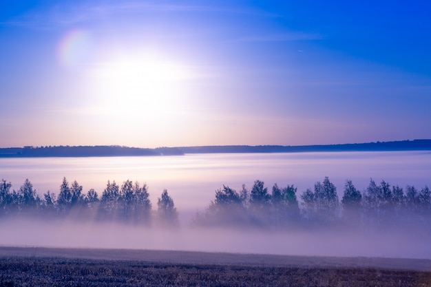 Schöne landschaft bei sonnenaufgang im sommer Premium Fotos