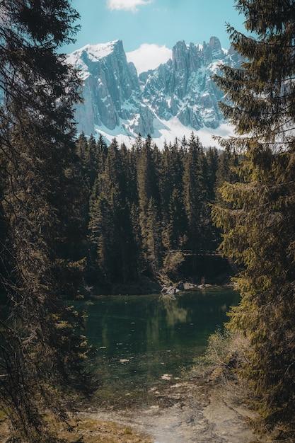 Schöne landschaft der grünen bäume nahe dem gewässer über hohen bergen Kostenlose Fotos