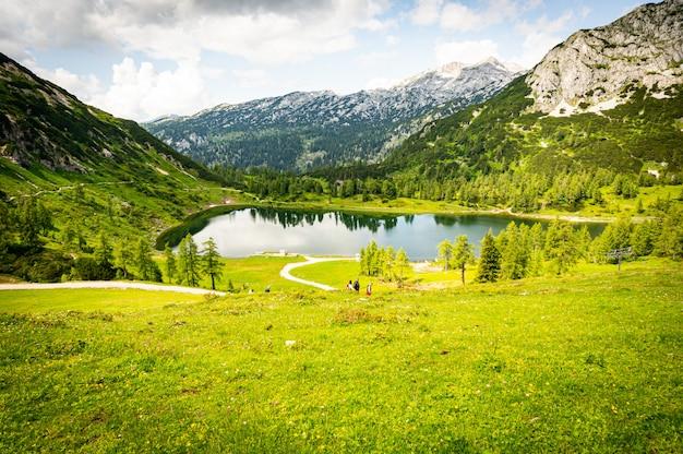 Schöne landschaft eines grünen tals nahe den alpen in österreich unter dem bewölkten himmel Kostenlose Fotos