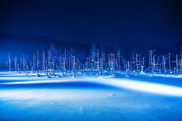 Schöne landschaft im freien mit blauem teichfluß nachts mit leuchten in der schneewintersaison Kostenlose Fotos