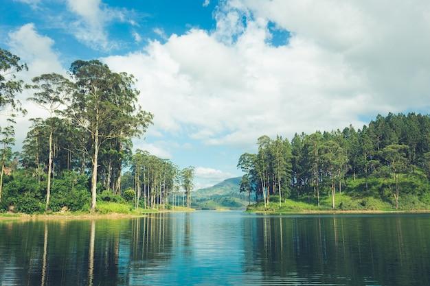 Schöne landschaft von sri lanka. fluss, berge und teeplantagen Premium Fotos