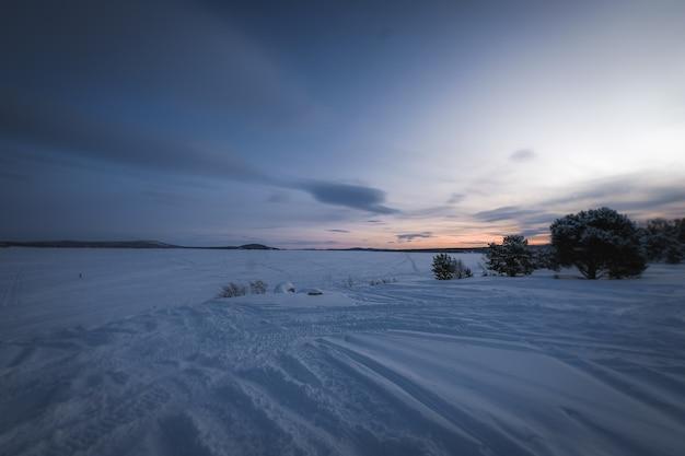 Schöne landschaft von vielen blattlosen bäumen in einem schneebedeckten land während des sonnenuntergangs Kostenlose Fotos