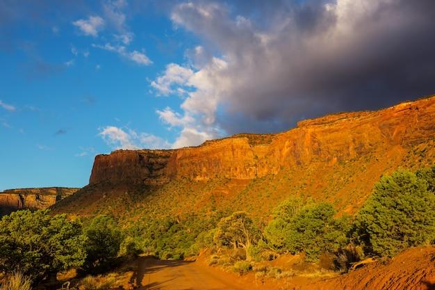 Schöne landschaften der amerikanischen wüste Premium Fotos