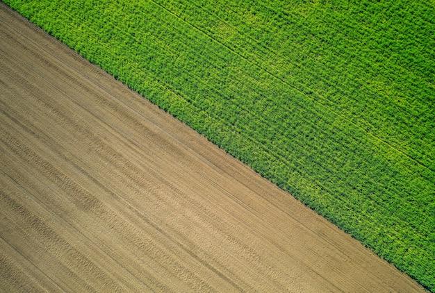 Schöne luftaufnahme eines grünen landwirtschaftlichen feldes Kostenlose Fotos