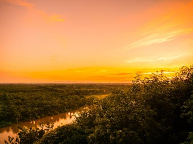Schöne luftaufnahme mit grüner waldlandschaft in der dämmerung Kostenlose Fotos