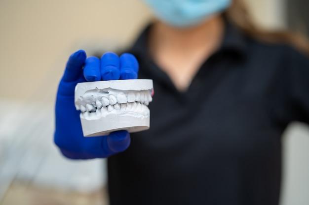 Schöne mädchen professionelle arzt zahnarzt kieferorthopäde zeigt einen gipsabdruck des kiefers Premium Fotos