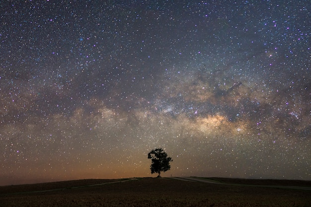 Schöne milchstraße mit einem einzelnen treebackground. landschaft mit nachtsternenklarem himmel und einem baum auf hügel Premium Fotos