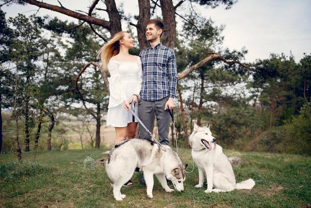 Schöne paare in einem sommerwald mit hunde Kostenlose Fotos