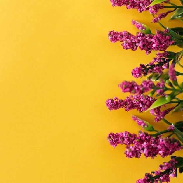 Schöne rosa blumen auf gelbem hintergrund Kostenlose Fotos