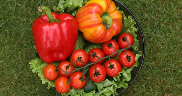 Schöne saftige rote tomaten. Premium Fotos