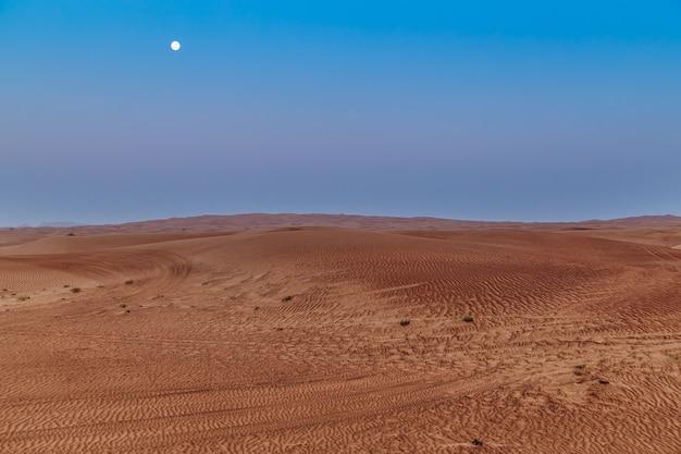 Schöne sanddünen in der wüste. Premium Fotos