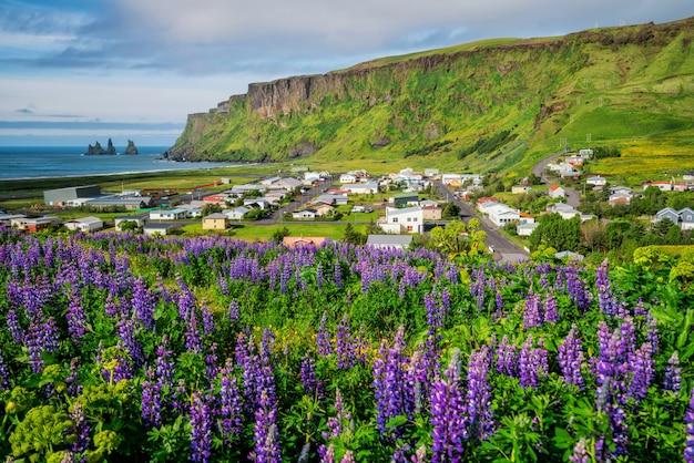 Schöne stadt vik i myrdal island im sommer. Premium Fotos