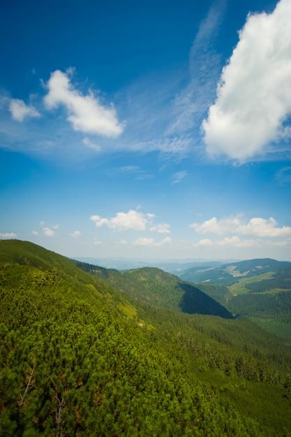 Schöne wiesen auf bergen Kostenlose Fotos