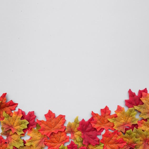Schöne zusammensetzung des herbstlaubs mit kopienraum auf die oberseite auf hellblauem hintergrund Kostenlose Fotos
