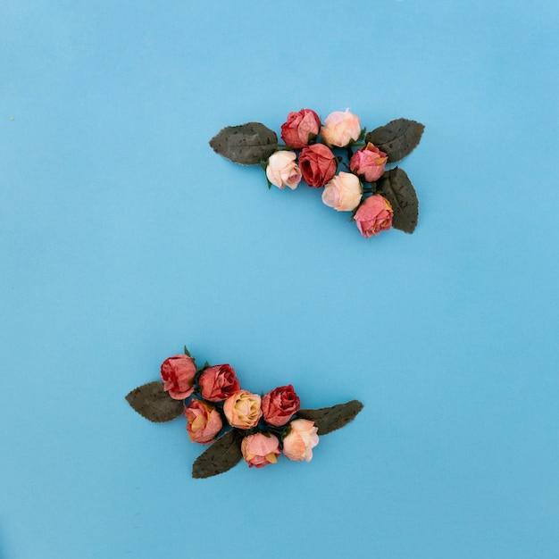 Schöne zusammensetzung von rosen und von anlage auf blauem hintergrund Kostenlose Fotos