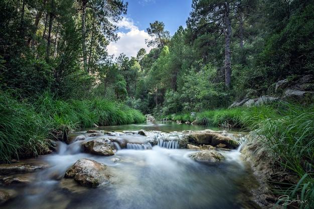 Schöner fluss, begleitet von grüner vegetation und blauem himmel Premium Fotos
