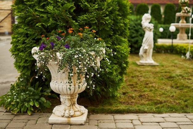 Schöner garten des sommers oder des frühlinges mit gänseblümchenblumen Premium Fotos