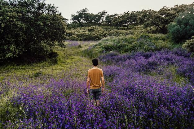 Schöner langer schuss einer person, die unter einem haufen lavendelblumen in der natur steht Kostenlose Fotos