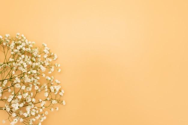 Schöner pastellrosmit blumenhintergrund. weiße kleine blüten. blumen gypsophila. flache lage, draufsicht, kopienraum Premium Fotos