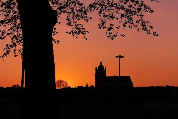 Schöner schuss des bauens und der baumschattenbilder während des sonnenuntergangs Kostenlose Fotos