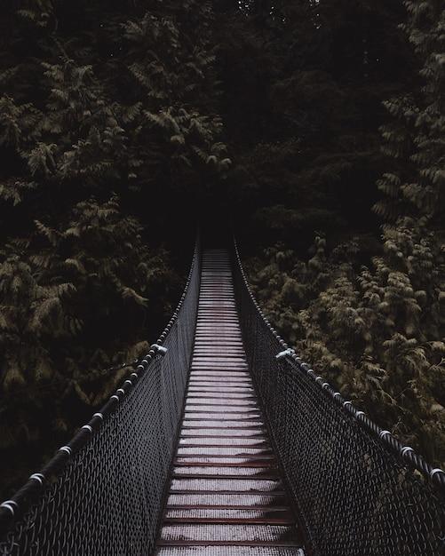 Schöner schuss einer hölzernen hängebrücke, die zu einem dunklen geheimnisvollen wald führt Kostenlose Fotos