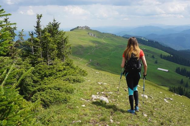 Schöner schuss einer wanderin, die im berg unter dem blauen himmel im sommer wandert Kostenlose Fotos