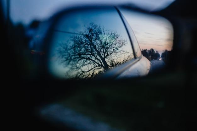 Schöner schuss eines baumes, der im seitenspiegel eines autos reflektiert wird Kostenlose Fotos
