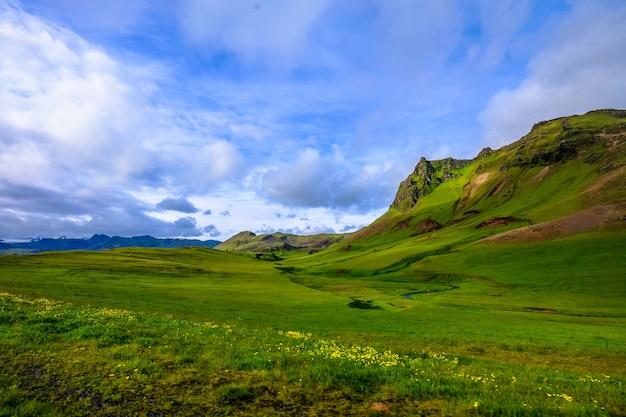 Schöner schuss eines grasfeldes mit gelben blumen nahe bergen unter einem bewölkten himmel Kostenlose Fotos