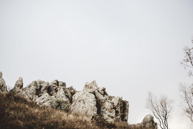 Schöner schuss eines trockenen grasbewachsenen hügels mit felsen und blattlosen bäumen unter einem bewölkten himmel Kostenlose Fotos