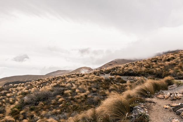 Schöner schuss eines trockenen wüstenhügels mit bergen Kostenlose Fotos