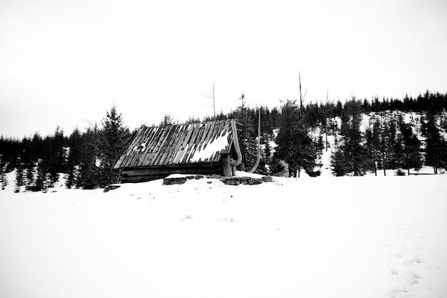 Schöner schuss eines verschneiten bewaldeten berges mit einem verlassenen haus in der mitte Kostenlose Fotos