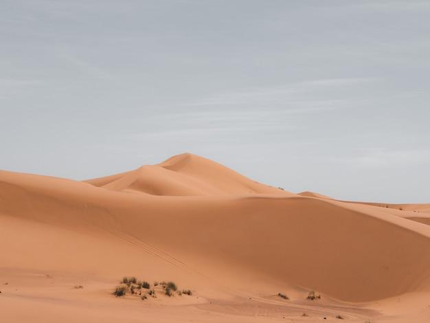 Schöner schuss von sanddünen mit einem bewölkten himmel im hintergrund Kostenlose Fotos