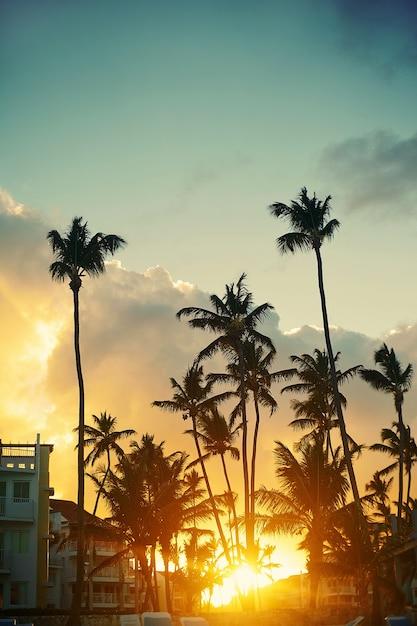 Schöner sonnenuntergang an einem strandresort in den tropen Kostenlose Fotos