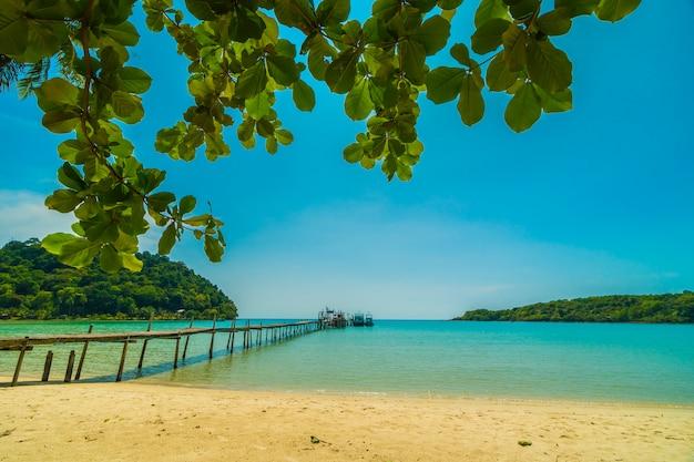 Schöner tropischer strand und meer mit kokosnusspalme in der paradiesinsel Kostenlose Fotos