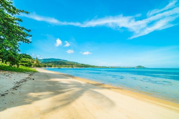 Schöner tropischer strand und meer mit kokosnusspalme Kostenlose Fotos