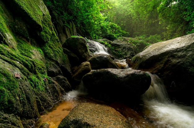 Schöner wasserfall im dschungel. wasserfall im tropischen wald mit grünem baum und sonnenlicht Premium Fotos