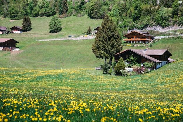 Schönes europäisches dorf auf einem grünhügel Kostenlose Fotos