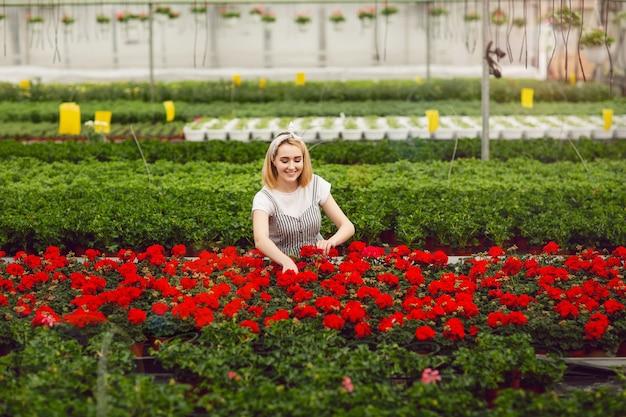 Schönes junges lächelndes mädchen, arbeitskraft mit blumen im gewächshaus Premium Fotos