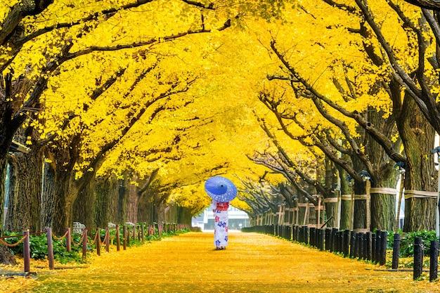 Schönes mädchen, das japanischen traditionellen kimono an der reihe des gelben ginkgobaums im herbst trägt. herbstpark in tokio, japan. Kostenlose Fotos