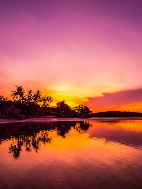 Schönes tropisches strandmeer und -ozean mit kokosnusspalme zur sonnenaufgangzeit Kostenlose Fotos