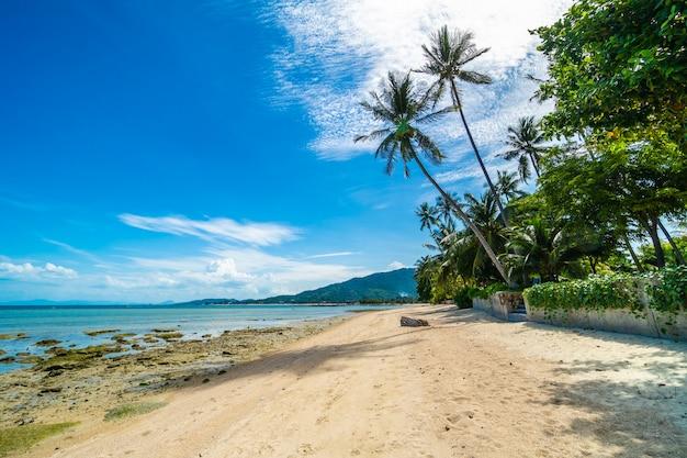 Schönes tropisches strandmeer und -sand mit kokosnusspalme auf blauem himmel und weißer wolke Kostenlose Fotos