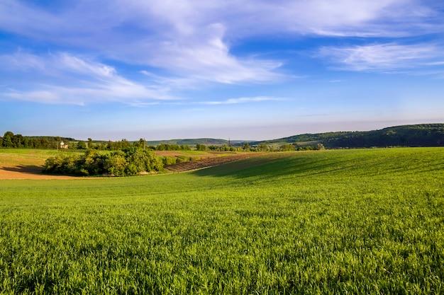 Schönes weites panorama von gepflügten und grünen feldern mit wachsendem weizen unter klarem hellblauem himmel auf friedlichem dorf und entfernten hügeln. landwirtschaft und landwirtschaftskonzept. Premium Fotos