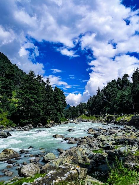 Schönheit der natur Premium Fotos