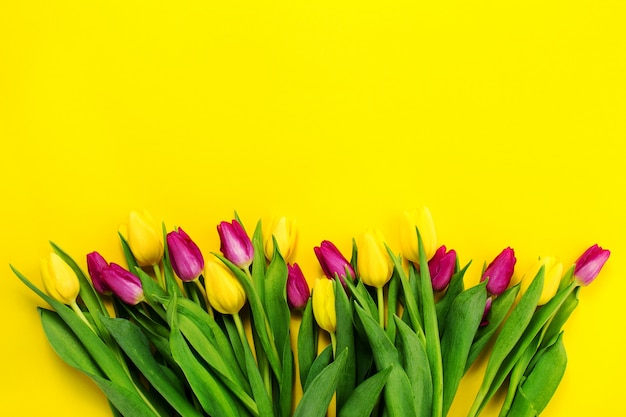 schöne gelbe lila oben Blüte Kostenlose Fotos
